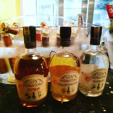 gin paella night Sapore 2